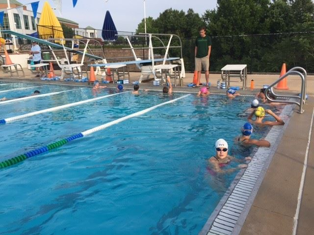 Fenton Sharks Swim Team in Pool